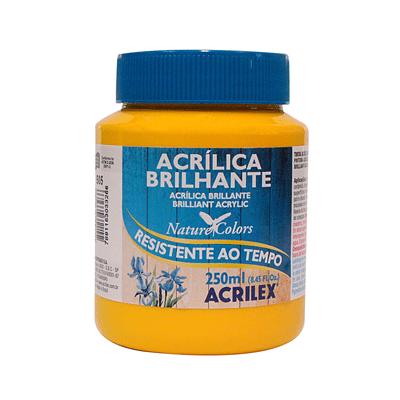 Tinta-Acrilica-Brilhante-250ml-Amarelo-Ouro
