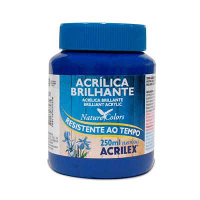 Tinta-Acrilica-Brilhante-250ml-Azul-Turquesa