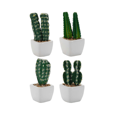 Arranjo-Cactus-Le-52x45cm
